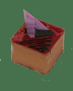 Chocolate Raspberry Mousse Mini
